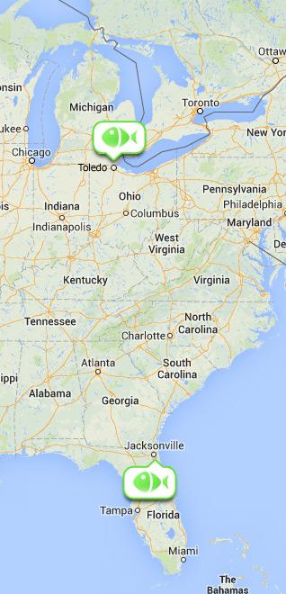 Map Showing Toledo Ohio and Jacksonville Florida